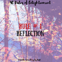 Rule # 1- A Reflection
